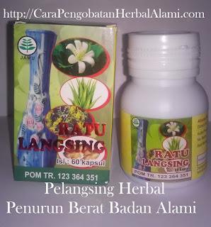 Jual Ratu Langsing (Obat Pelangsing) Herbal Alami