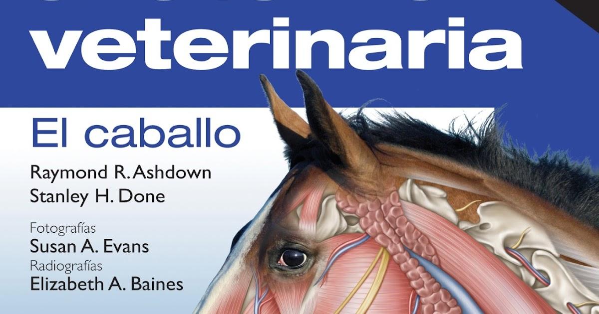 anatomia veterinaria dyce pdf gratis