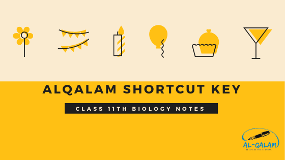 CLASS-11TH-BIOLOGY-NOTES