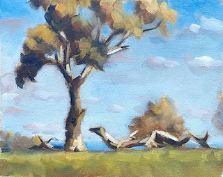 Oil painting of a eucalypt with fallen limbs and the hint of distant hills.