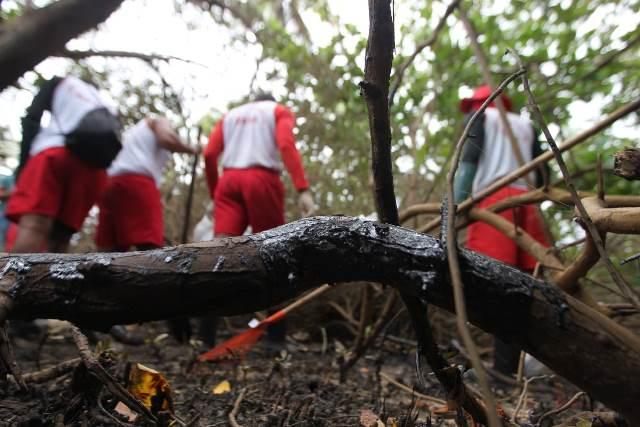 Corpo de Bombeiros da Bahia já retirou 40 toneladas de óleo no Litoral Norte