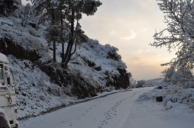 Shoghi, Best Places to visit in Himachal Pradesh