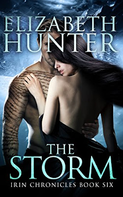 Book Review: The Storm, by Elizabeth Hunter, 4 stars