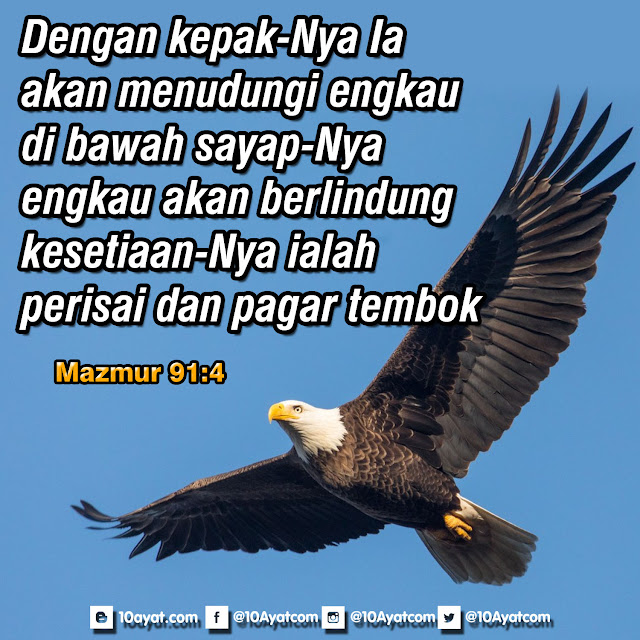 Mazmur 91:4