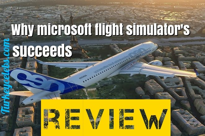 Why microsoft flight simulator's succeeds