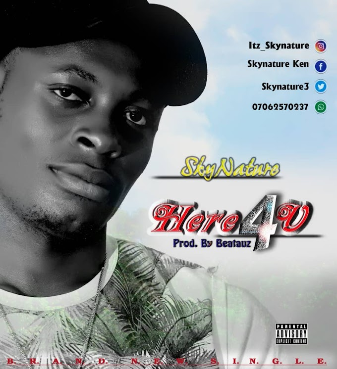 Music : Download Skynature - Here 4 U