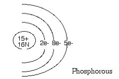Mr. Harlan's 8th Grade Science 2012-13: QUIZ ON ATOMS AND