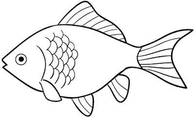 Cara Mewarnai Sketsa Gambar Ikan