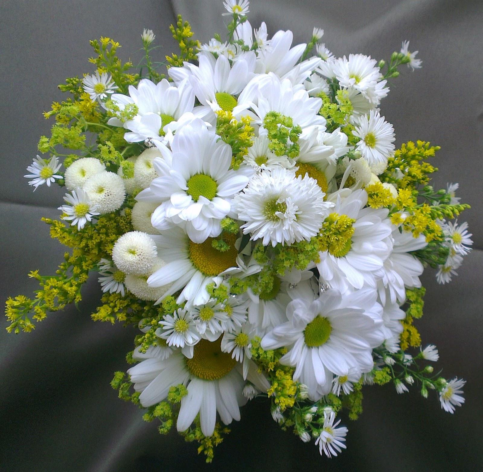 Sandra's Flower Studio: Daisy Bouquets And Buttonholes