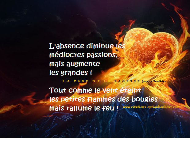 La Page de la Sagesse : Citation sur l'absence