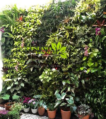 jasa pembuatan vertical garden jakarta selatan