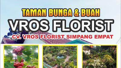 VROS FLORIST Simpang Empat Jual Beragam Jenis Bunga dan Buah