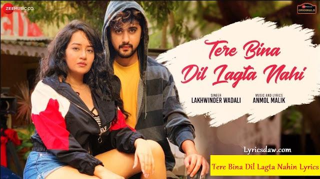 Tere Bina Dil Lagta Nahin Lyrics