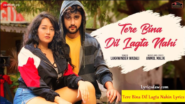 Tere Bina Dil Lagta Nahin Lyrics in hindi
