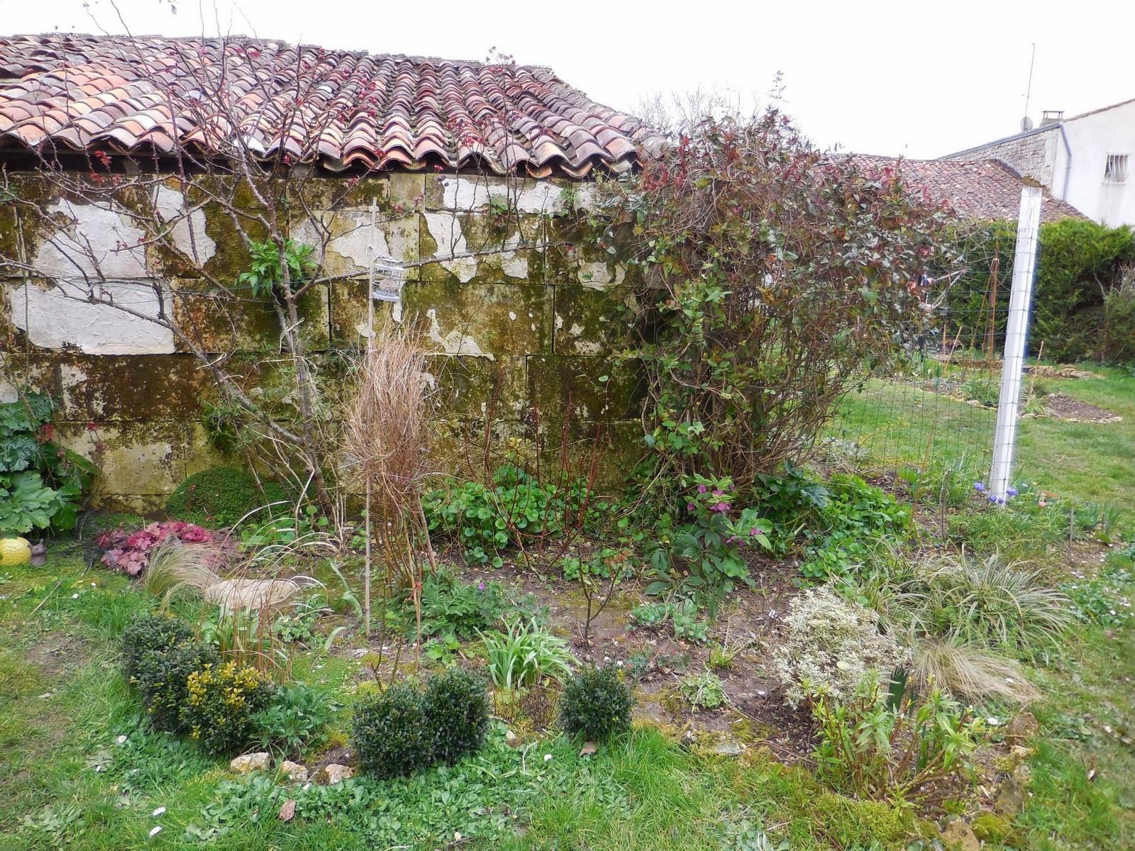 DSCN1690 Unique De Parterre De Fleurs Devant Maison Schème