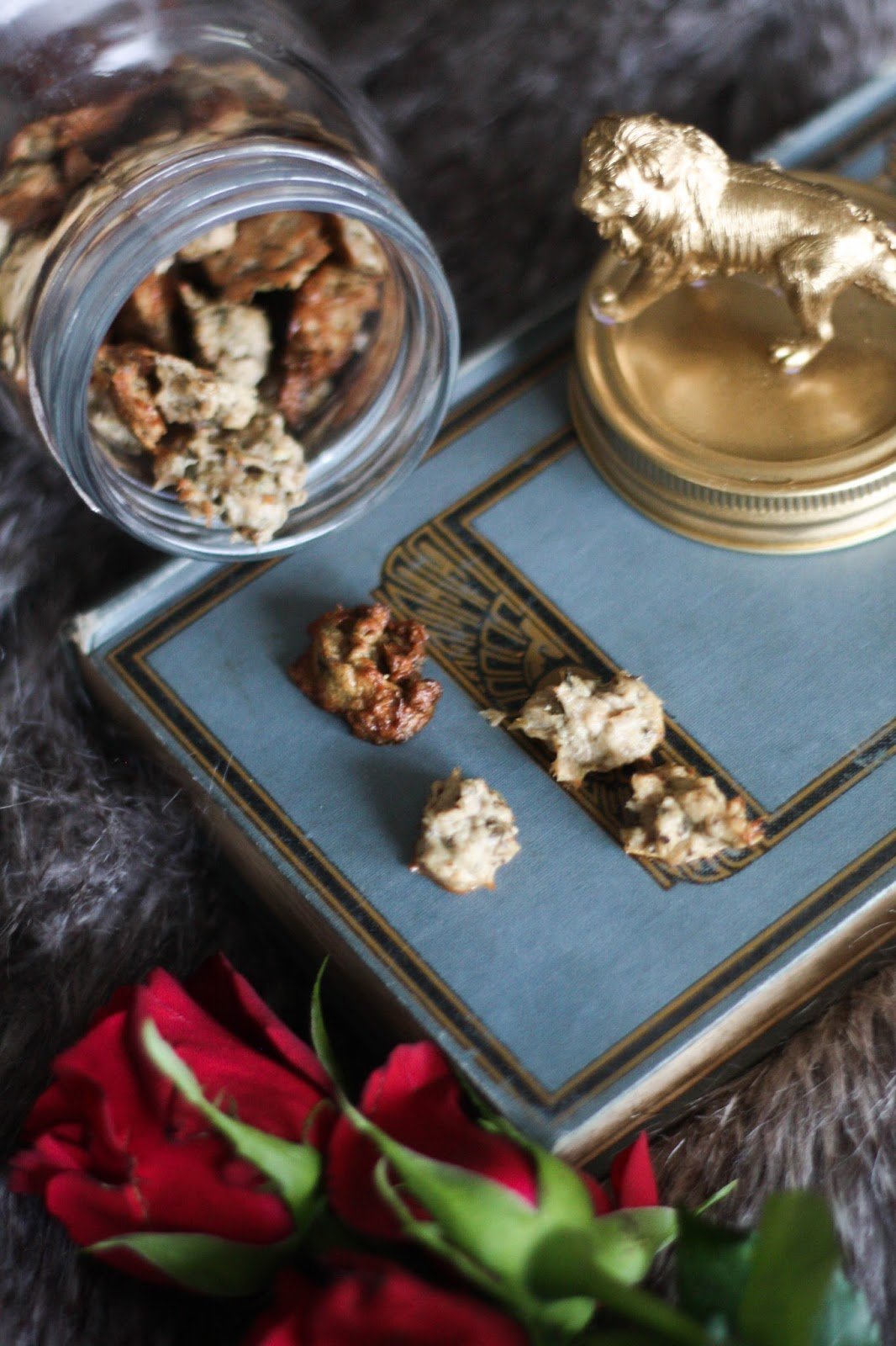 Homemade cat treats with tuna & catnip (+ DIY jar for cat treats)