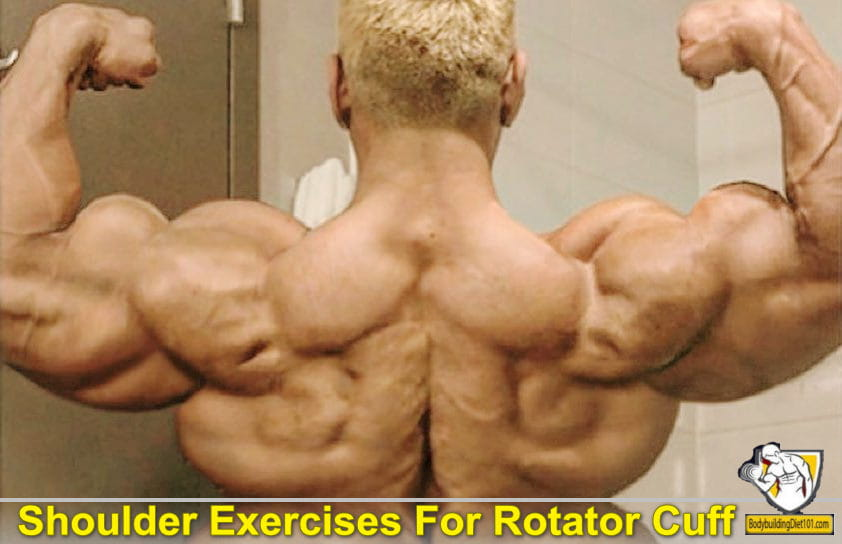 Rotator Cuff injuries are the most common source of shoulder pain