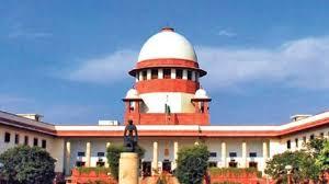 मोकाट वेब पोर्टल, यू ट्यूब चॅनल्सवरून सर्वोच्च न्यायालयाची तीव्र नाराजी