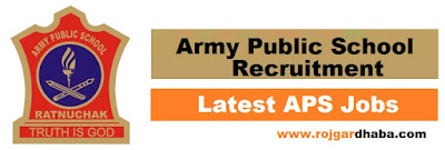 aps-army-public-school-job