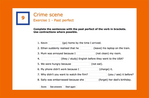 Complete the sentences with the past perfect of the verb in brackets.