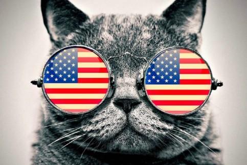 Czego jeszcze nie wiesz o Ameryce?