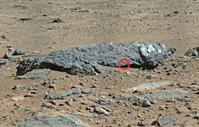 mars fossil