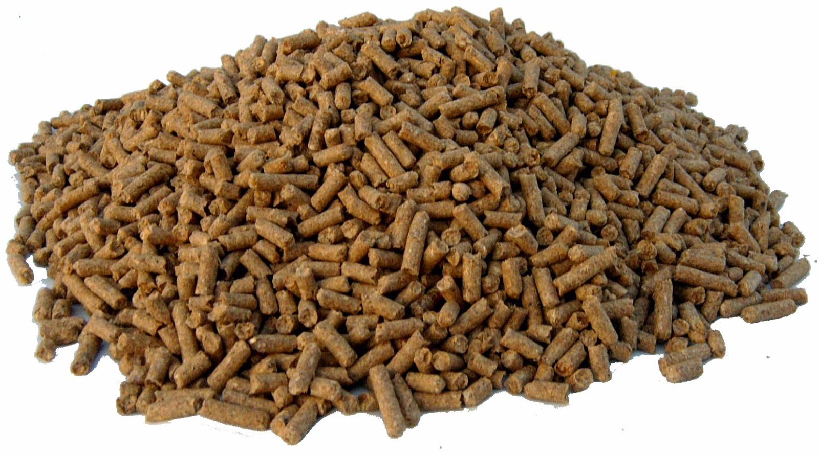 Horse Life And Love Types Of Feed