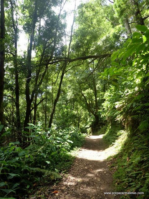 ruta de senderismo fácil en el este de San Miguel Azores