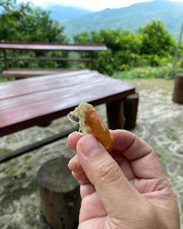 BIBIT DURIAN CHANEE KAKI 3 SUPER Bukittinggi