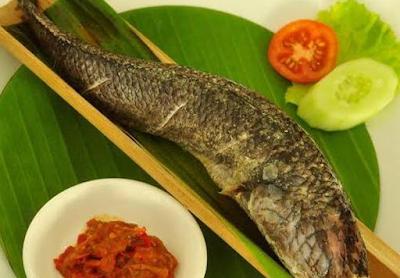 Ikan Senggung