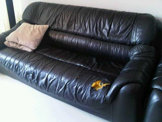 Service Sofa Terpercaya & Terbaik di Yogyakarta