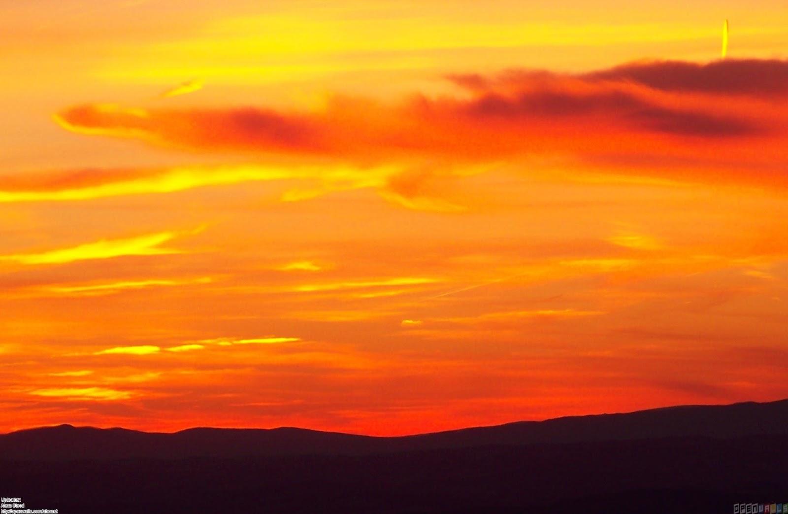 Sky Receiver Power Orange