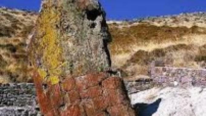 Βρέθηκε γιγαντιαίος κορμός απολιθωμένου δένδρου στην Λήμνο 20 εκατομμυρίων ετών