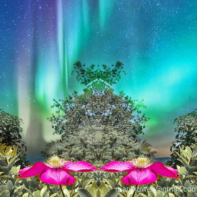fotografía, fantasía con flores.
