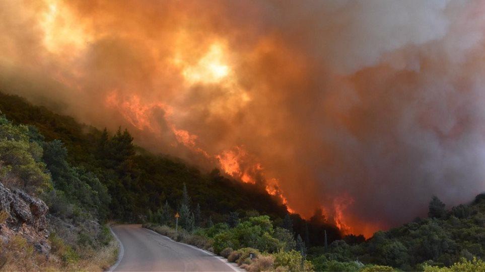 ΑΜΘ: Τραγικός απολογισμός - Κάηκαν 19.270 στρέμματα