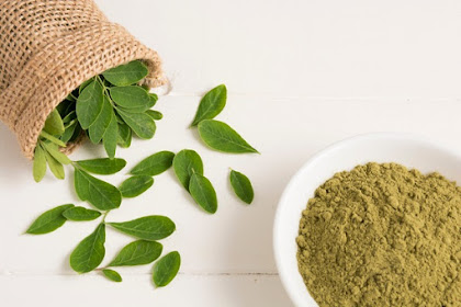 Facts and Benefits of Moringa Oleifera - The Miracle Tree