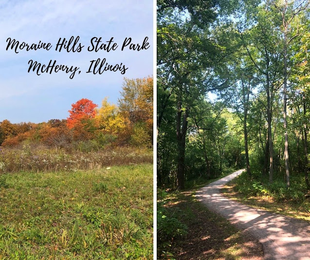 Moraine Hills State Park: Hiking Through a Natural Gift Sculpted by the Ice Age