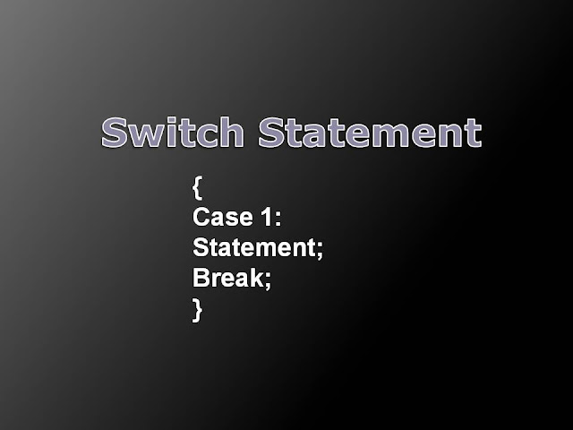 Switch Case Program