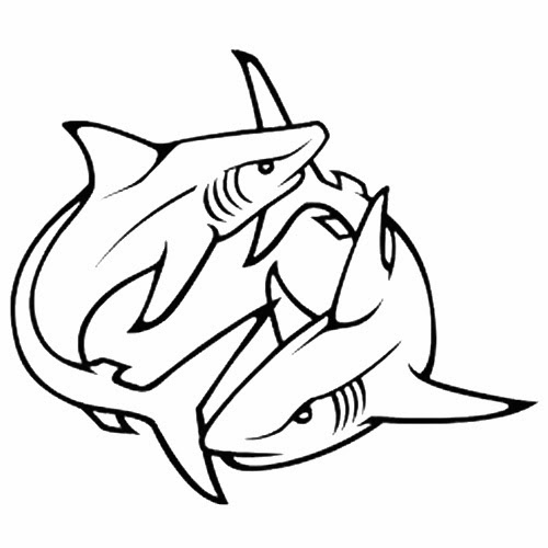 Exhilarating image pertaining to shark stencil printable