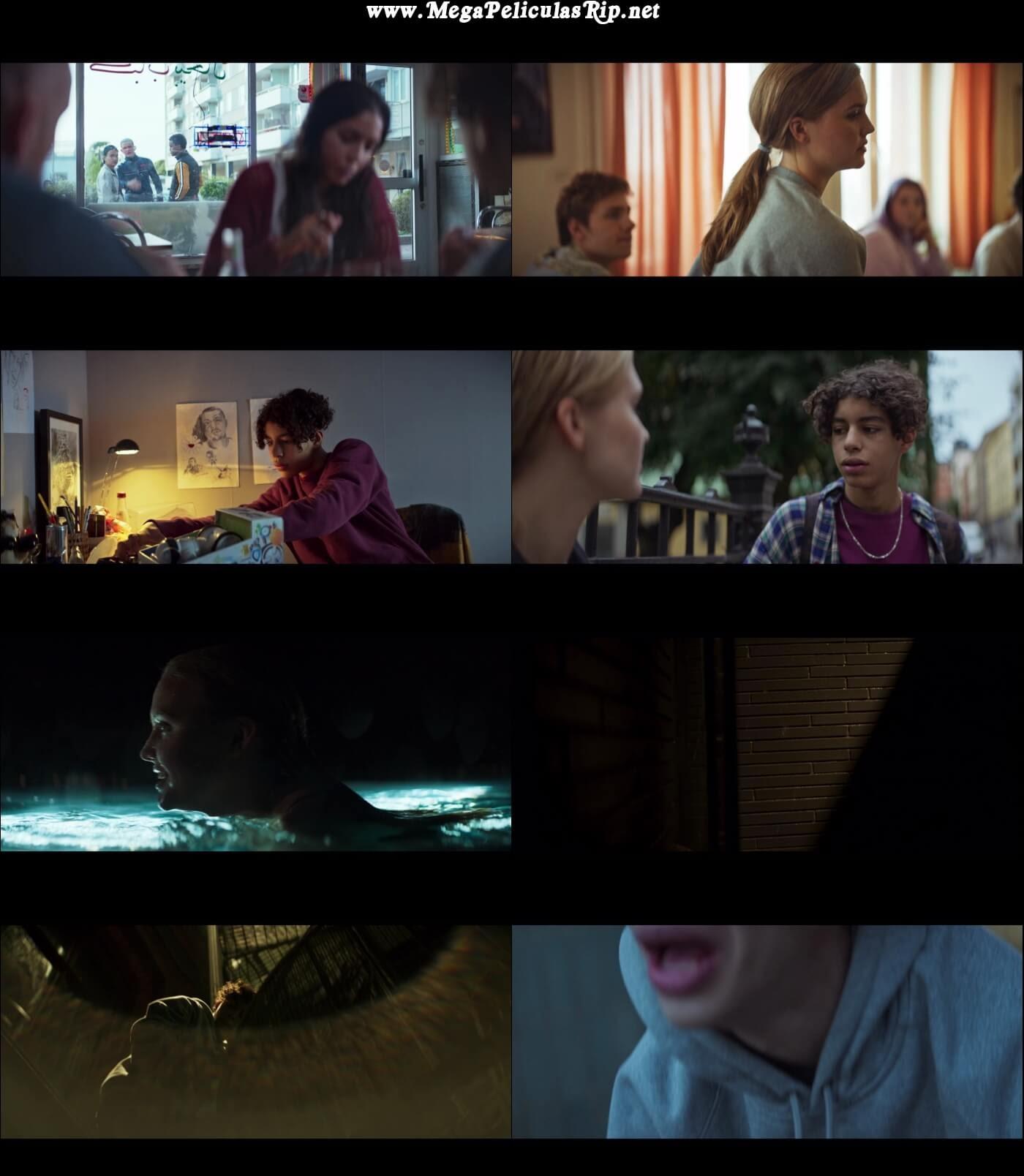 Vinterviken 1080p Latino