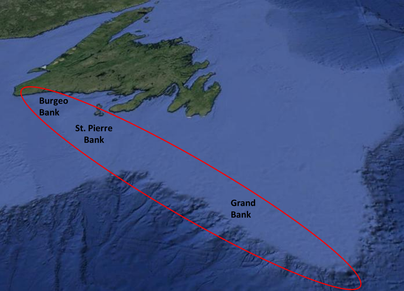 sampling area for the ce16013 survey which started in argentia on april 26 the vessel will sample waters of the burgeo st pierre and southern grand