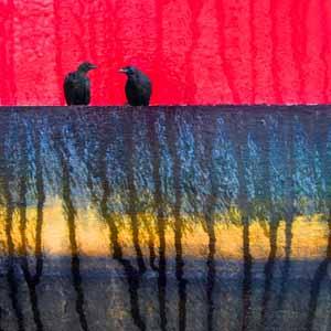 Photographic Art Emotional Refuge by Sara Harley