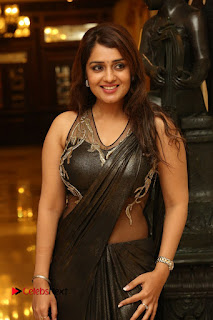 Actress Nikitha Pictures in Saree at Apartment Movie Audio Launch  0012.JPG