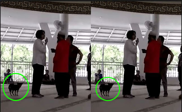Viral Wanita Bawa Anjing Ke Mesjid Dan Polisi Periksa Suaminya
