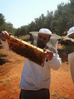Επαναστατικά μελίσσια: Ο Νίκος άφησε πίσω του την Αθήνα και ζει στην επαρχία με παρέα τις μέλισσες και τον σκύλο του τον Ραμόν.