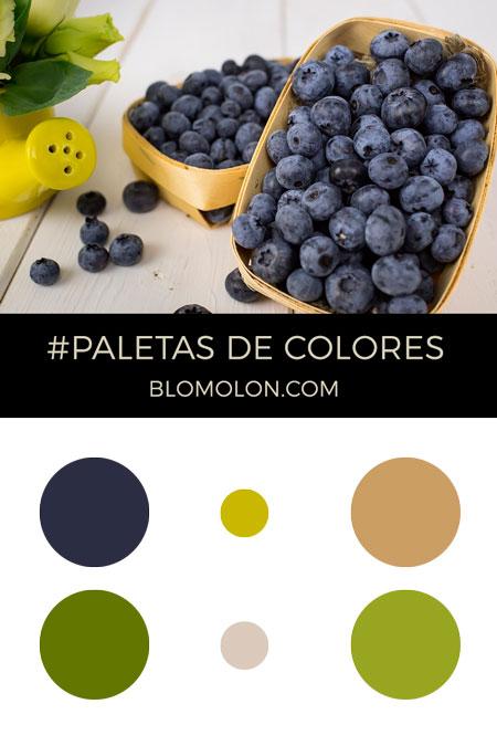 paletas_de_colores_del_mes_de_mayo_4