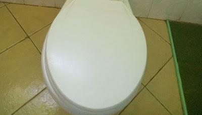 Cover toilet before flushing to control coronavirus, microbiologist tells Kenyans