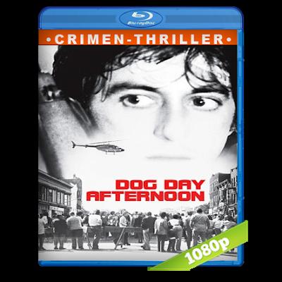 Tarde De Perros (1975) BRRip Full 1080p Audio Trial Latino-Castellano-Ingles 5.1