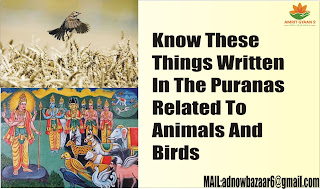 Know These Things Written In The Puranas Related To Animals And Birds