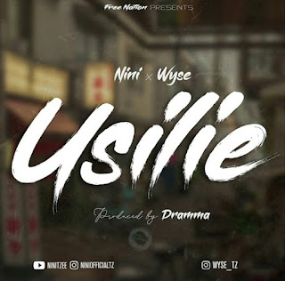 Download Audio | Nini x Wyse – Usilie Mp3